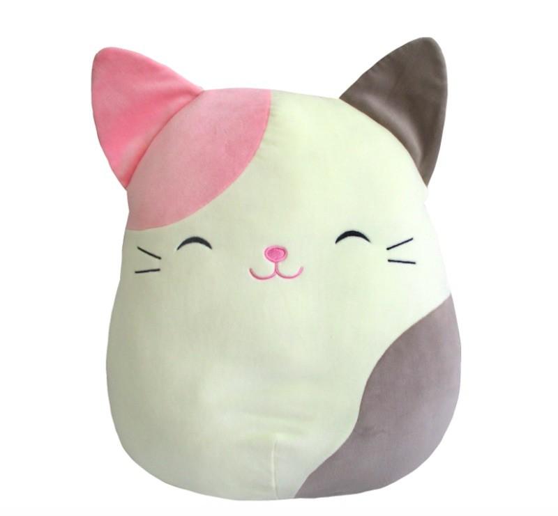 Karina the Cat