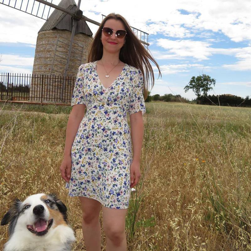 Dog photobombing travel photo