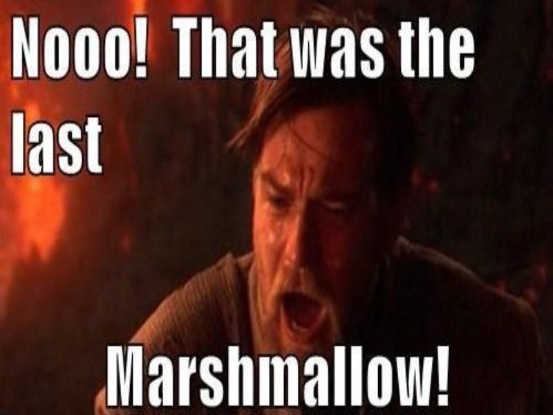 Last marshmallow meme