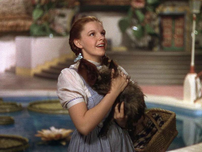 Kansas: 'The Wizard of Oz'