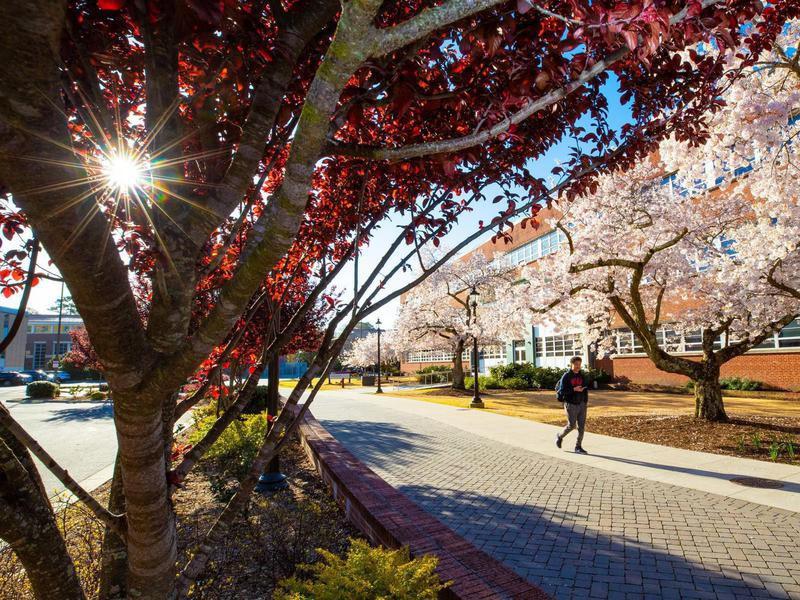 Student in East Carolina University