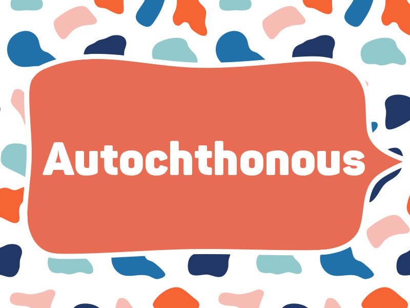 2004: Autochthonous
