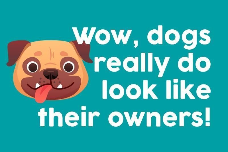 Wow, dogs really do look like their owners!
