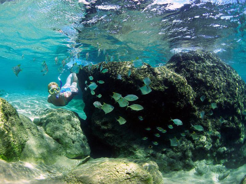 Woman snorkeling in Mabibi
