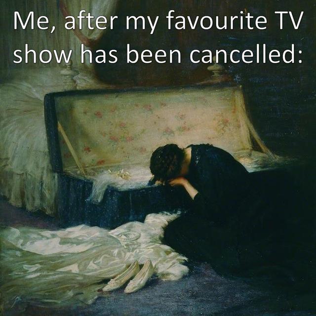 TV show cancelled meme