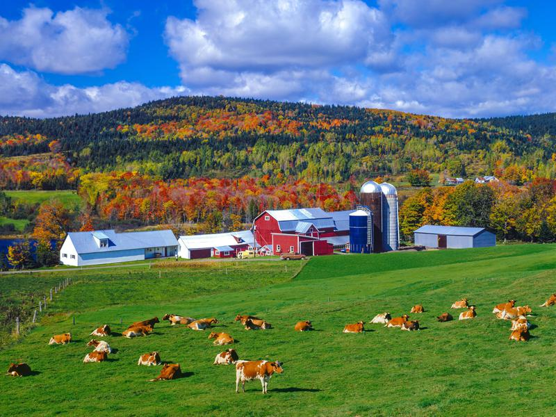 The state of Vermont, represented here by its Green Mountains, is one of many places that offer financial incentives to lure residents.
