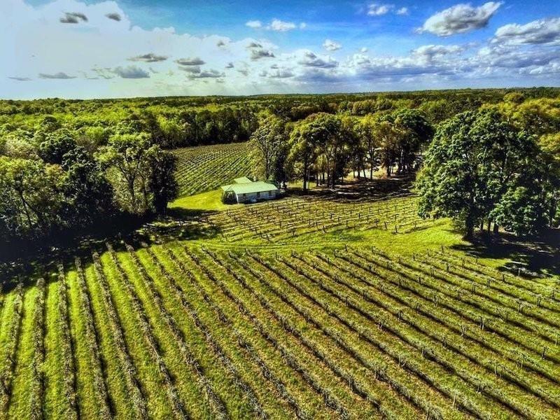 Chautauqua Vineyard & Winery
