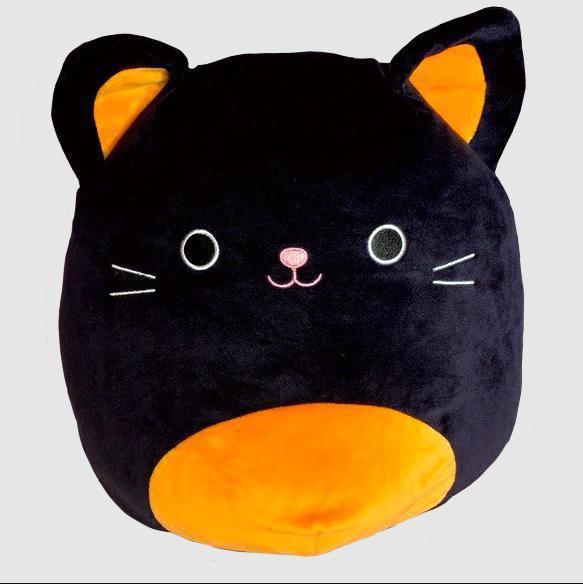 Colton the Cat