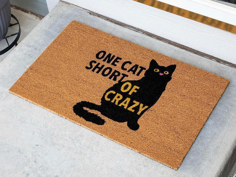 Funny cat doormat