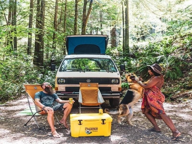 Couple and dog in camper van
