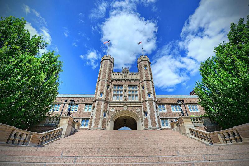 Washington University, St. Louis