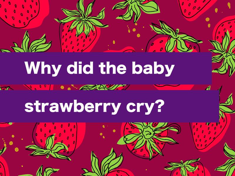 Funny Jokes Clean Jelly