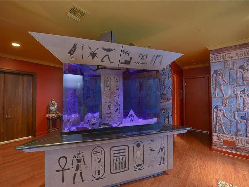 Shaq's custom aquarium and fish