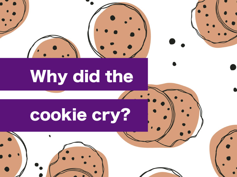 Funny Jokes Clean Cookies