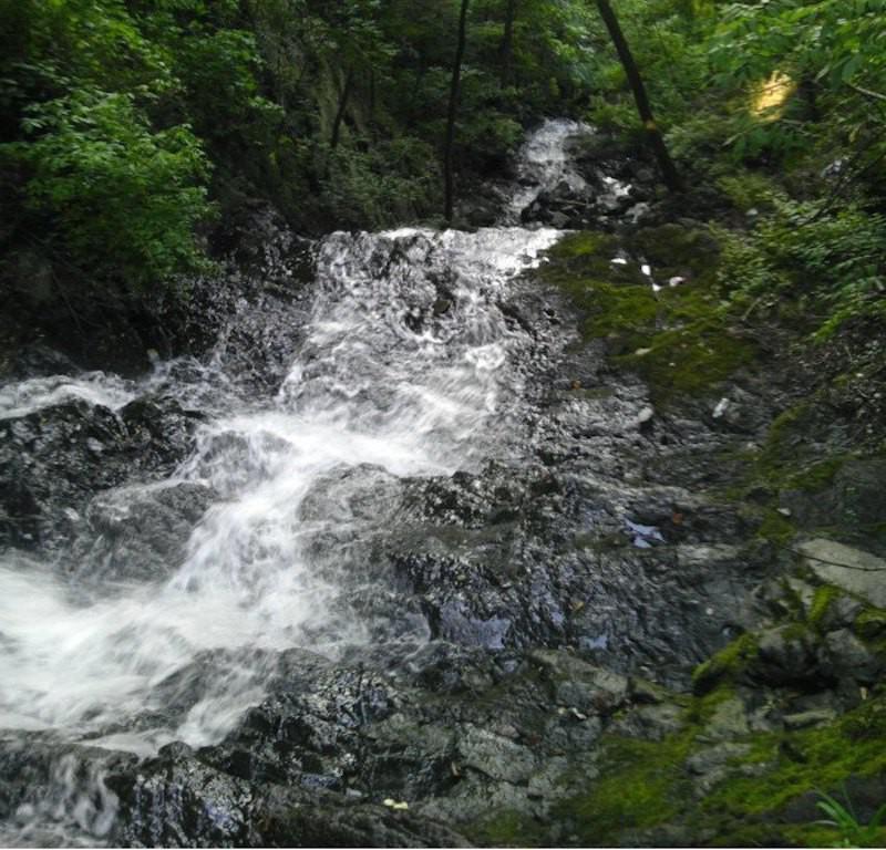Greenbrook Falls