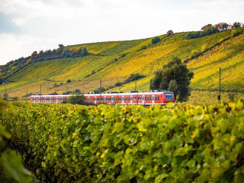 Rhine Valley Line