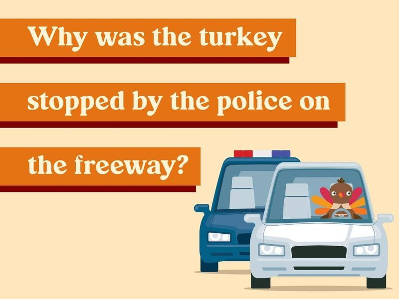 Why was the turkey stopped by the police on the freeway?
