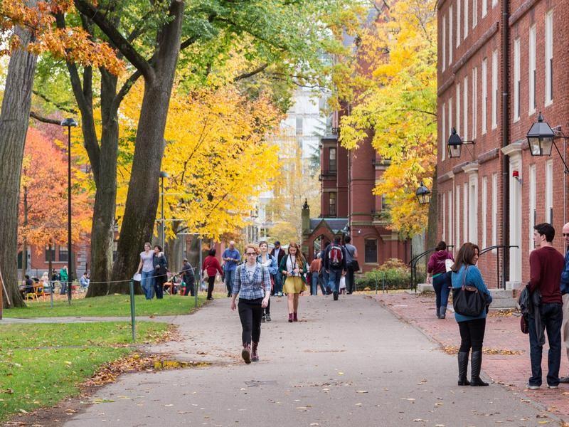 Harvard campus with brilliant fall foliage