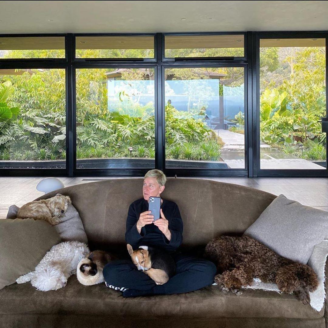 Ellen DeGeneres at home