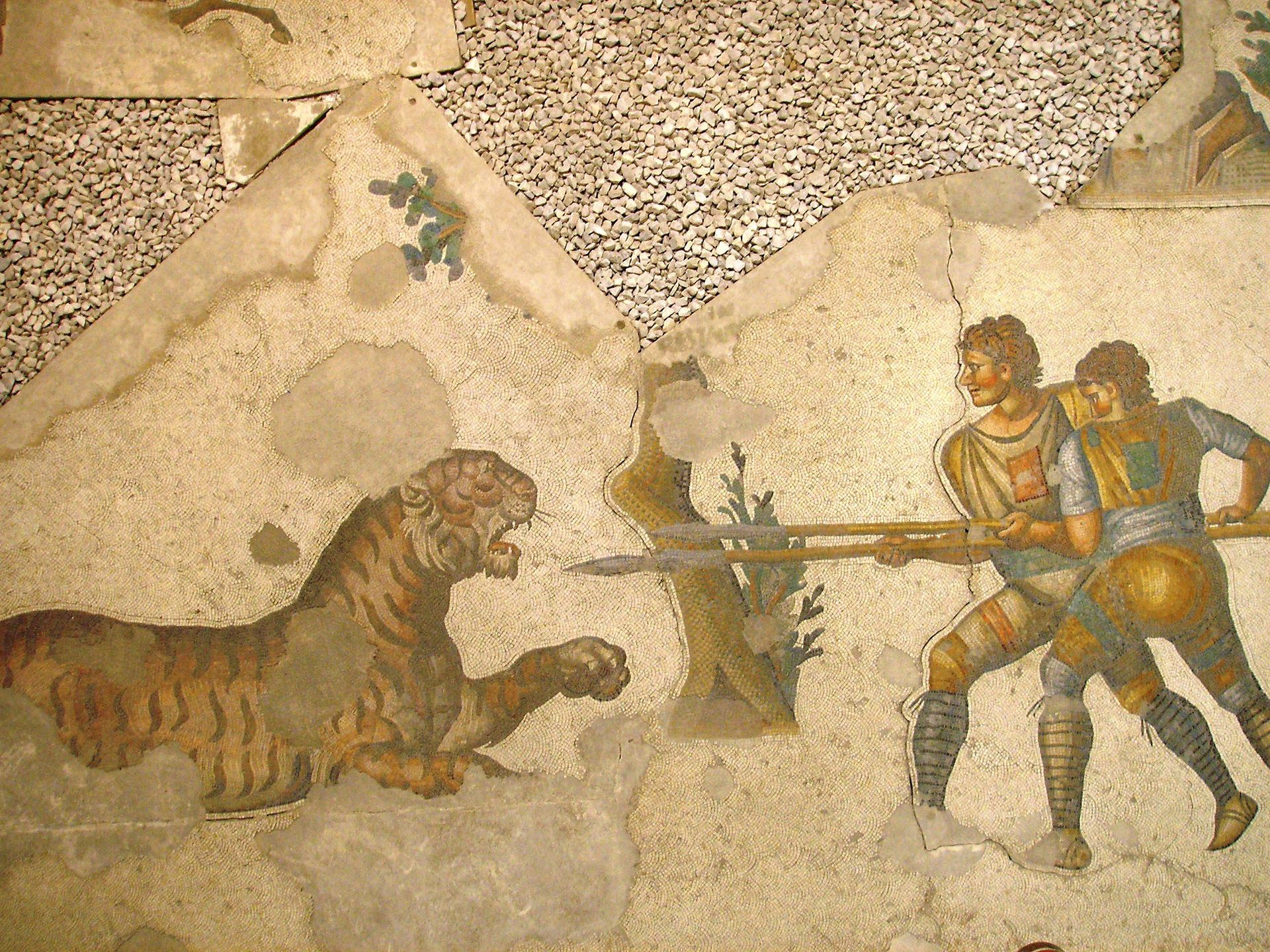 Two venatores fighting a tiger