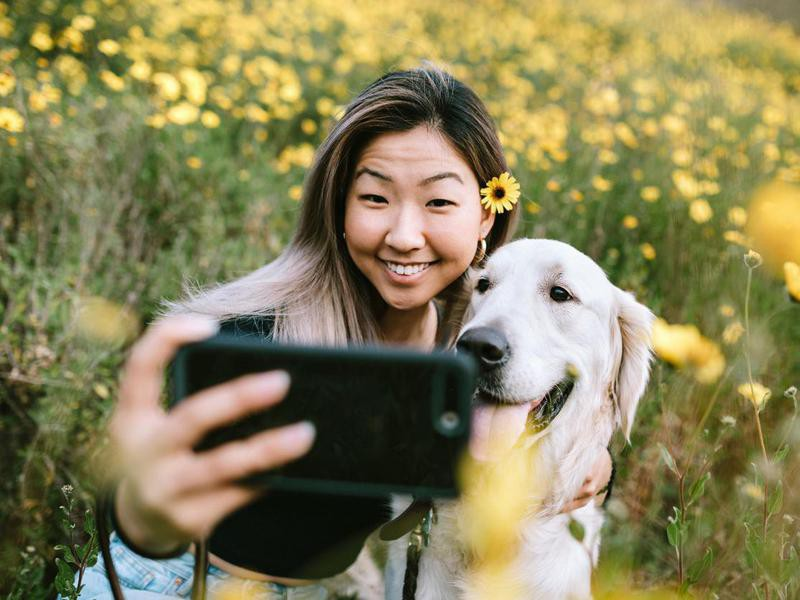 Your Phone Has 2,000 Photos, and Your Dog Is in Every. Single. One.