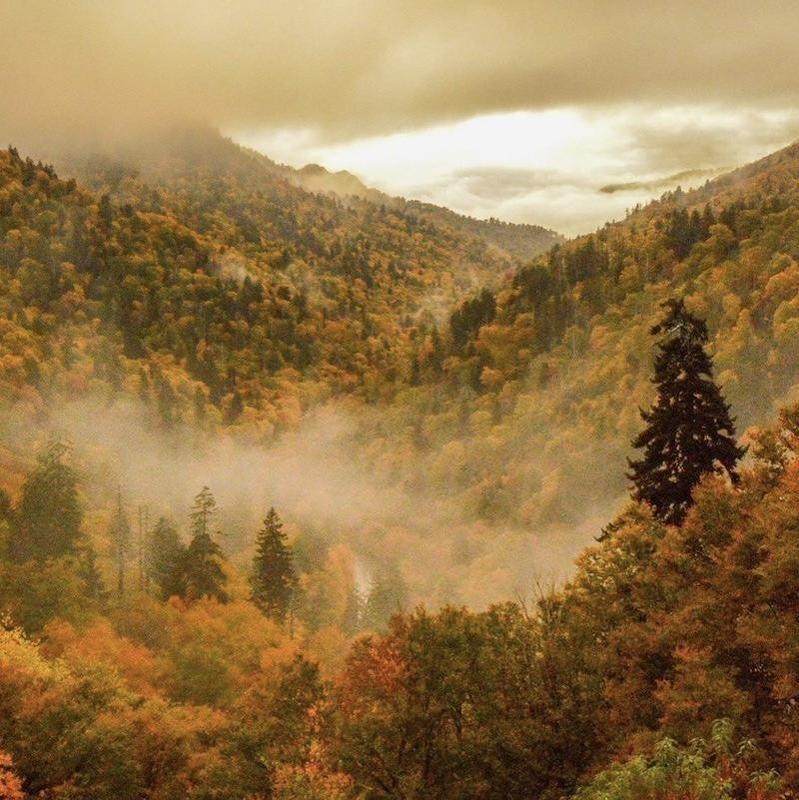 Great Smoky Mountain