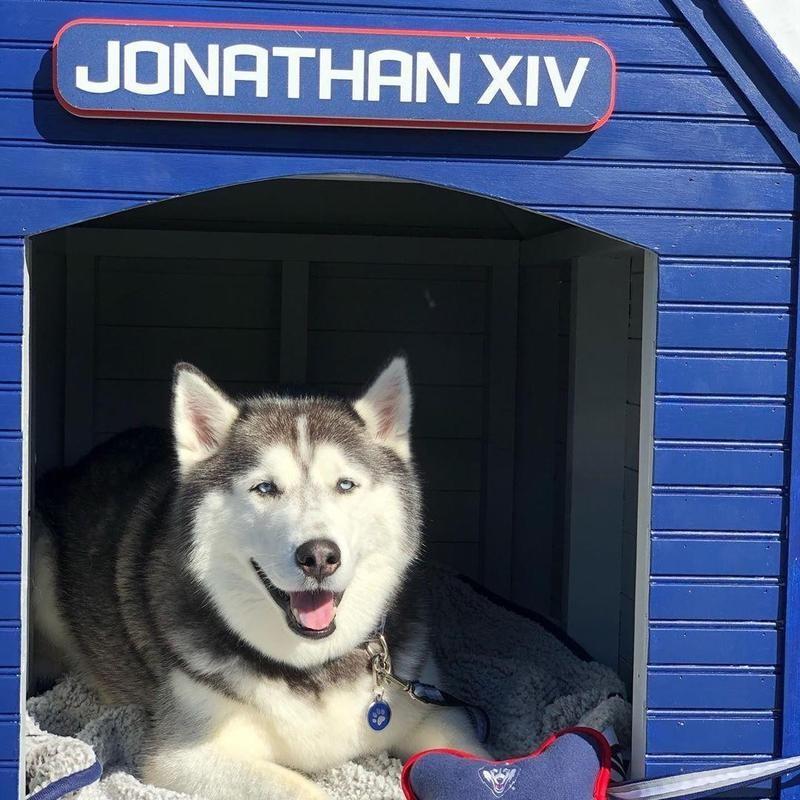 Jonathan XIV