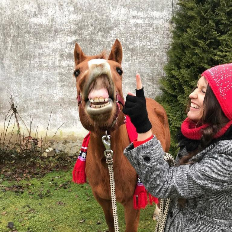 Horse Smiling with Woman