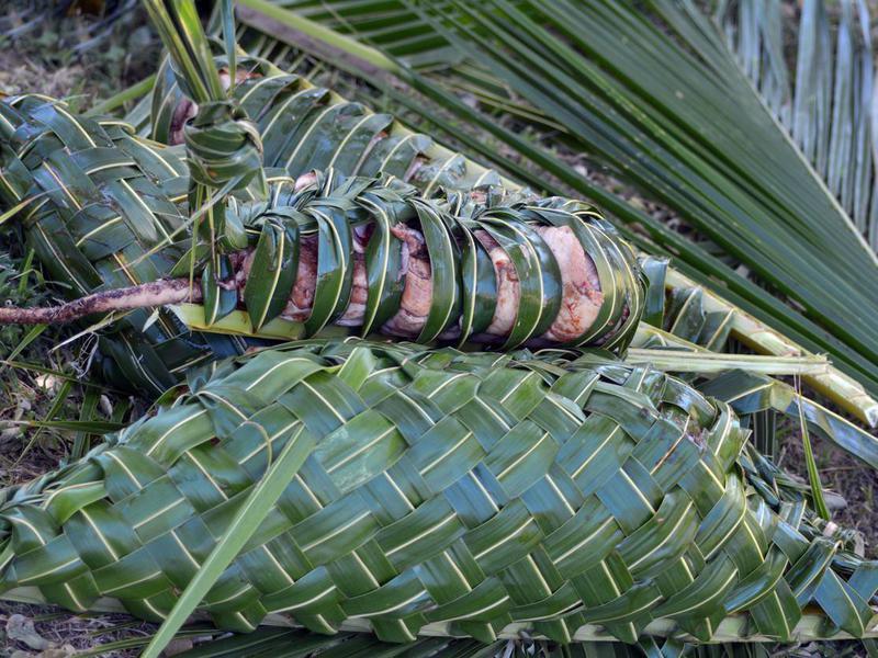 Fijian lovo barbeque