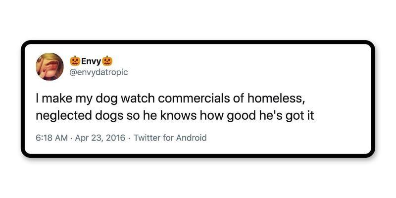 """You're a lucky dog."""