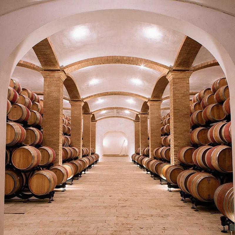 Felsina vineyard