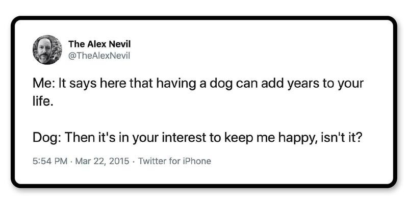 Lifehack: Get lots of dogs, and you can live forever.