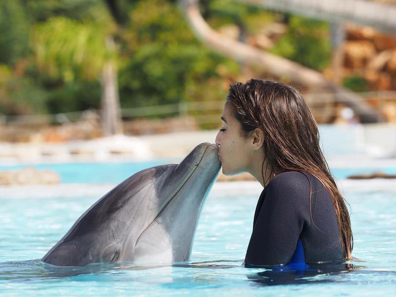 Girl kissing dolphin