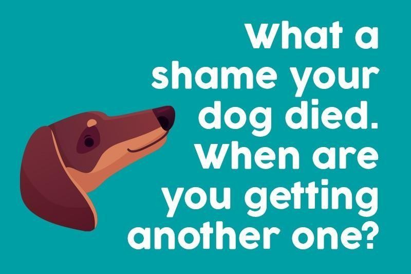 What a shame your dog died. When are you getting another one?