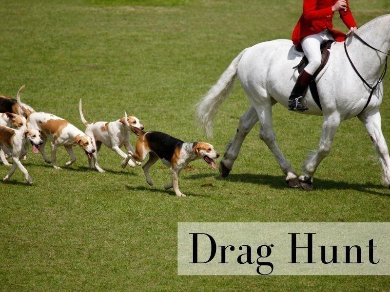Drag Hunt