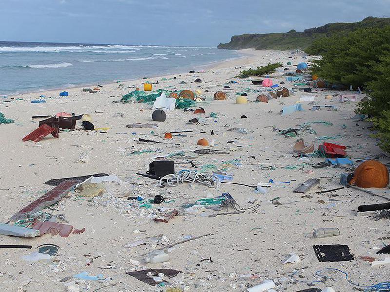 Plastic trash on remote Henderson Island