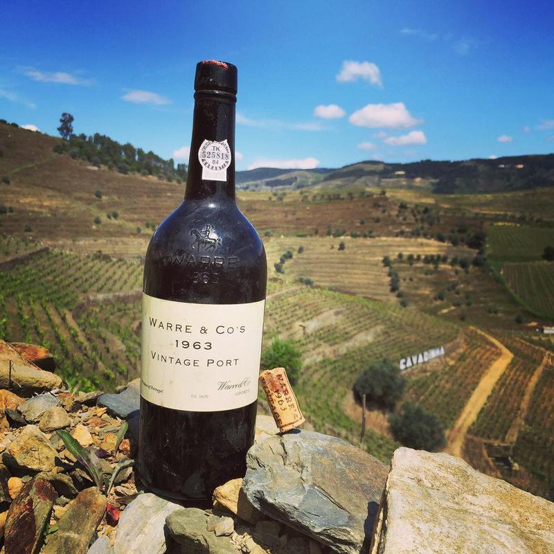 Warre's Vintage Port in vineyard