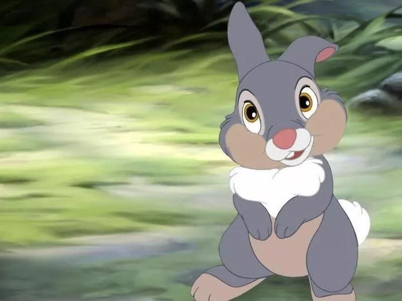 Thumper Disney animal character