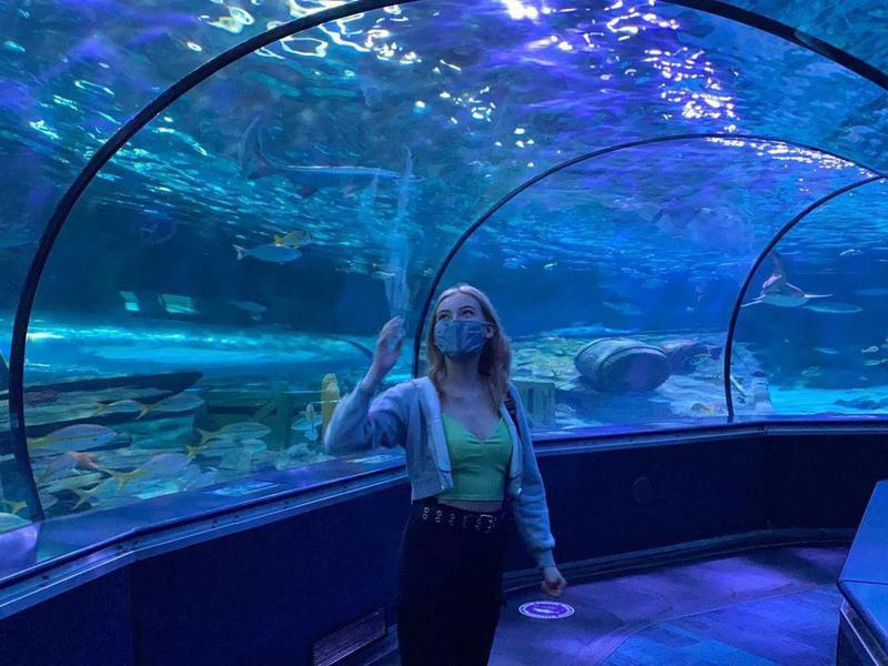 Tunnel at Ripley's Aquarium of Myrtle Beach