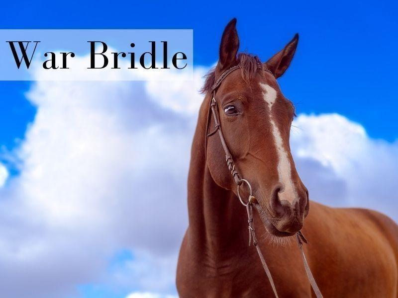 War Bridle