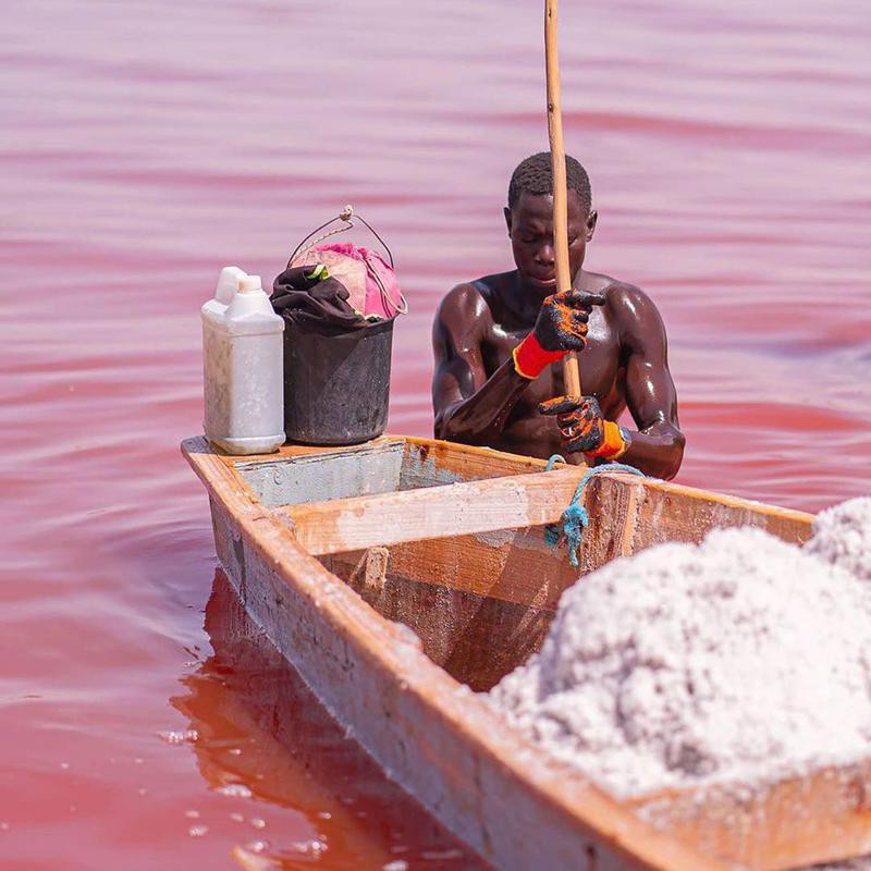 Man Harvesting Salt in Lake Retba
