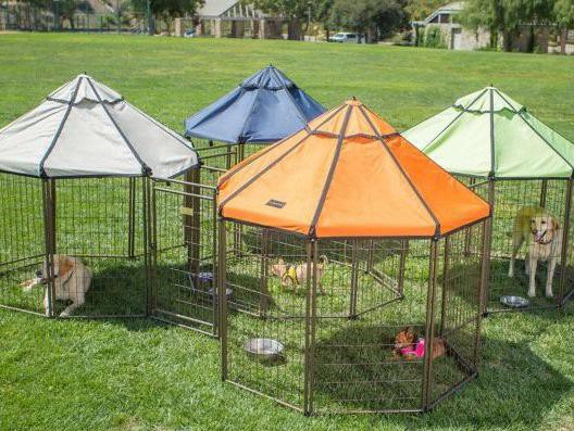 Tractor Supply dog kennel: Advantek 3-Foot Pet Gazebo With Canopy
