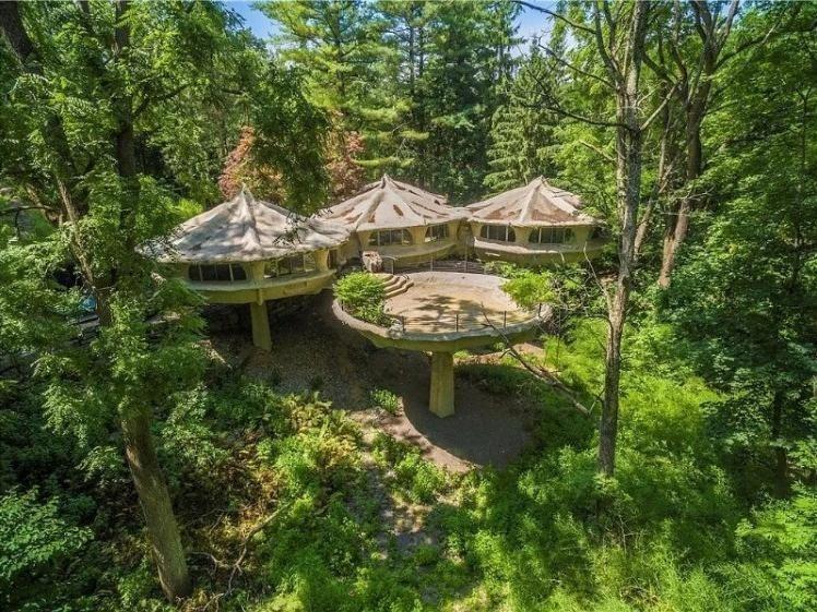 Mushroom house in New York