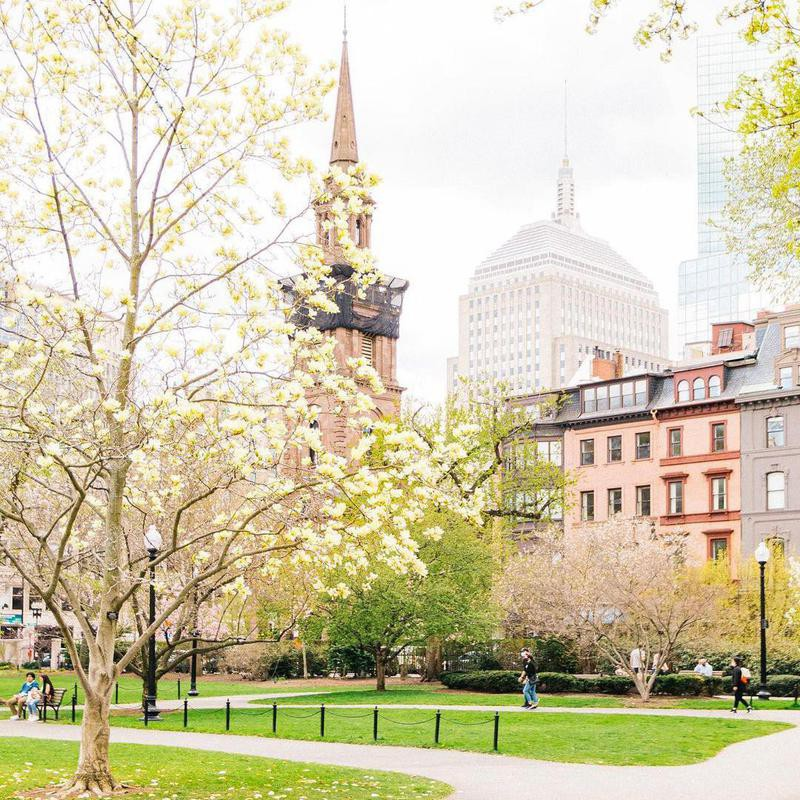 Buildings by Boston Common