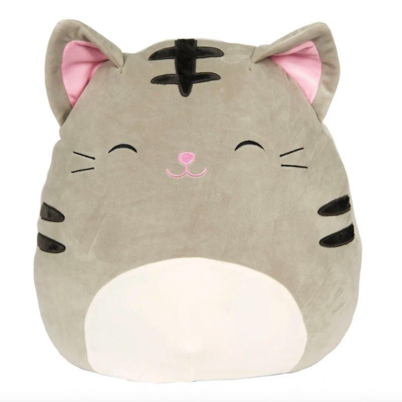 Tally the Tabby Cat