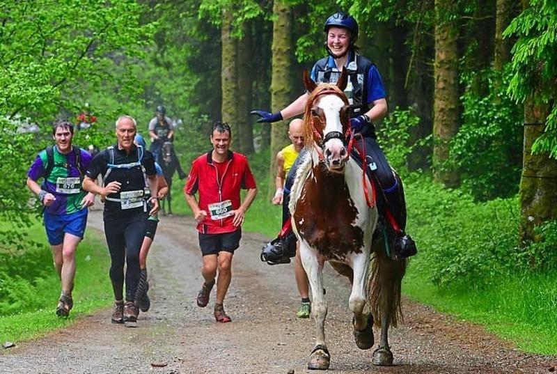 Woman on a horse followed by men jogging marathon