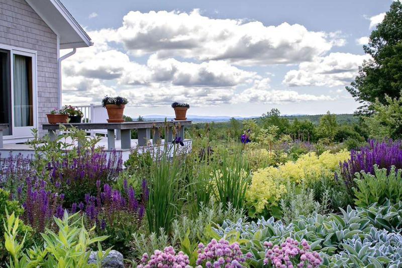 Meadow garden in Maine