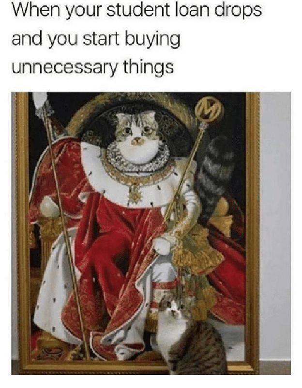 Cat wants to buy things