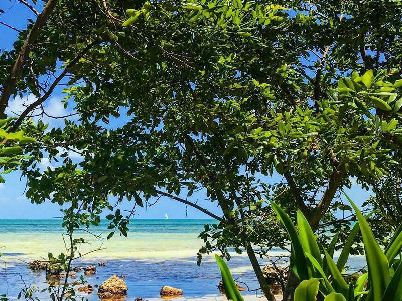 Geiger Key Beach