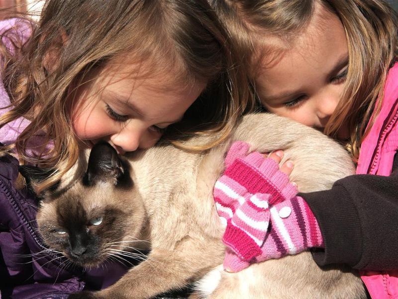 Children with Cat
